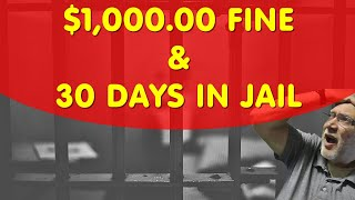 BARKING DOGS almost send an old lady to JAIL: Private investigator training videos