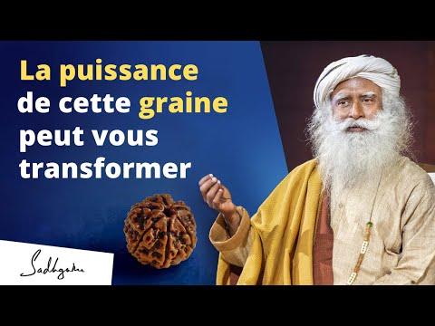 Cette graine vous protègera des énergies négatives | Sadhguru Français Cette graine vous protègera des énergies négatives | Sadhguru Français