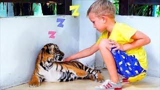 Vlad và Mama tại trang trại hổ ngủ