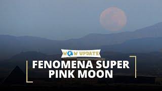 Super Pink Moon, Hujan Meteor Lyrids, dan Bulan Baru, Fenomena Alam Langka Sepanjang Bulan April