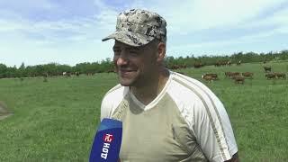 Станица-на-Дону от 25 июня 2021