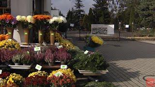 WTK.  Rozgoryczenie sprzedawców przy cmentarzach i akcja kupowania kwiatów