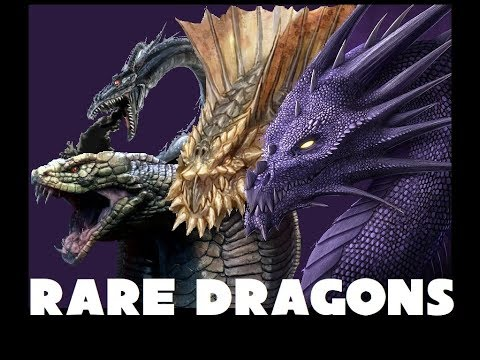 Dungeons and Dragons Lore: Drow, Sand, Purple and Cobra Dragons