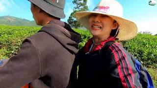 Lấy hết can đảm ngồi xe leo dốc vào núi sâu - Hương vị đồng quê - Bến Tre - Miền Tây