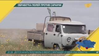 В Астане грузовики будут ездить только ночью в дни ЭКСПО-2017