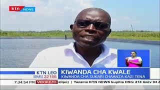 Kiwanda cha miwa cha Kwale charejelea shughuli baada ya kufungwa