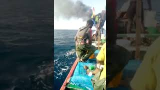 video: More than 100 migrants feared drowned after boat sailing from Senegal to Canary Islands catches fire