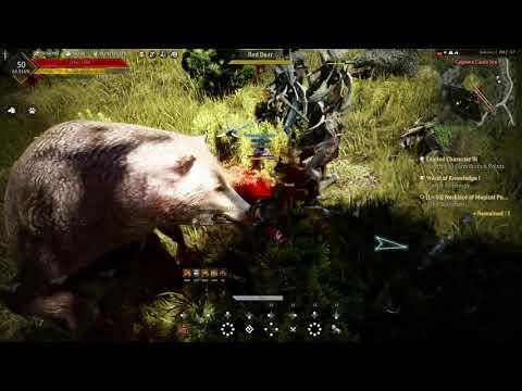 Découverte] Première impression Black Desert - Gameplay Xbox