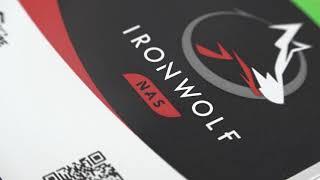 Seagate IronWolf Pro 7200/256M (ST18000NE000, 18TB)_동영상_이미지