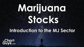 How to Trade Marijuana Stocks: Introduction to the Investing in the Marijuana Sector