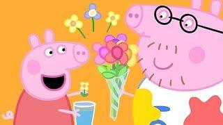 小猪佩奇 | 精选合集 | 1小时 | 兔子小姐生病了 | 粉红猪小妹|Peppa Pig Chinese |动画