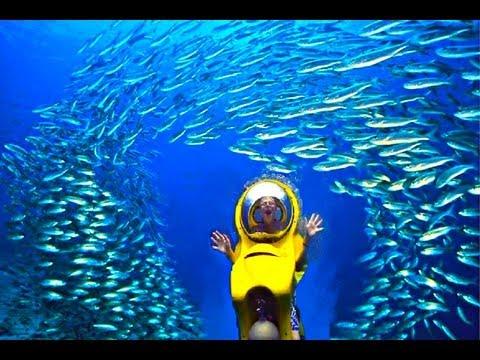 Unterwasser ohne Tauchen?, New Providence,Bahamas