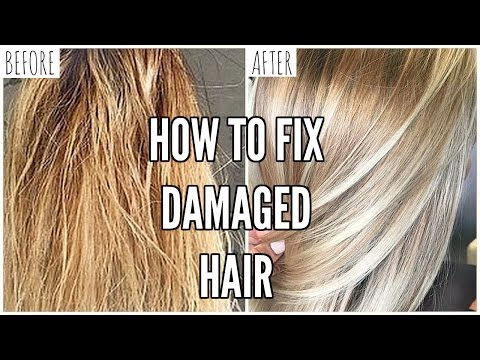Video How To Fix EXTREMELY Damaged Hair At Home