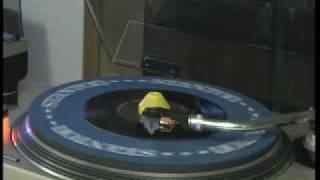 Bongo Stomp - Little Joey and the Flips - HQ