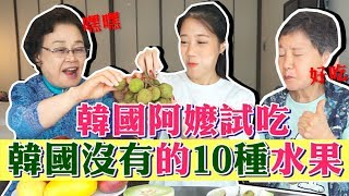 Trying 10 types of Taiwanese fruits you can't find in Korea!