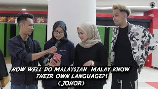 How Well Do Malaysian Malays Know Their Language?