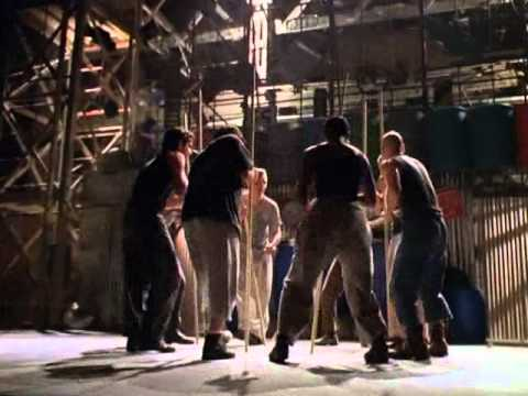 » Free Watch Stomp Out Loud