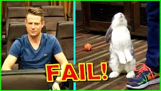 Rabbit's Dance Audition Gone WRONG
