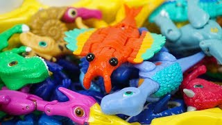 Dino Mecard Tiny Saur Anomalo Anomalocaris Rescued! +Avengers Find Saltasaurus  | ToyMoon