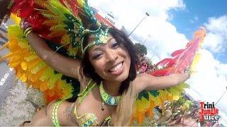 Miami Carnival 2014