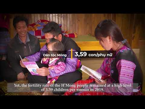 Fertility in Viet Nam: In-depth analysis from the 2019 Census