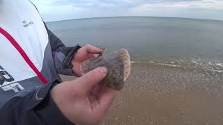 Осень рыбалка на море с берега в одессе