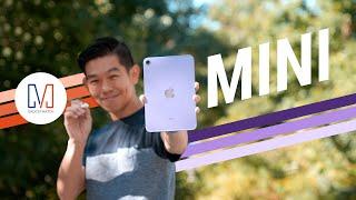 Apple iPad mini (2021) Review: My new FAVORITE iPad