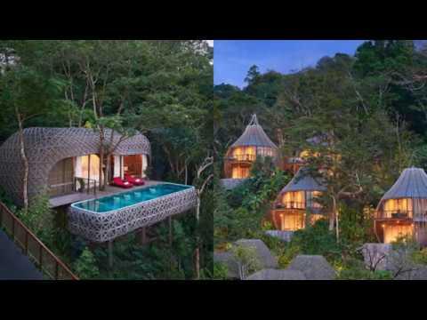 Tree House Construction Mumbai