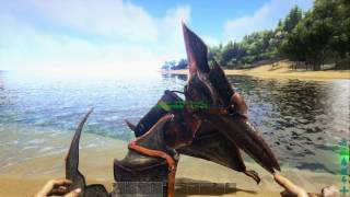 Ark survival evolved hchster gipfel most popular videos ark survival evolved maximaler dinosaurier malvernweather Image collections