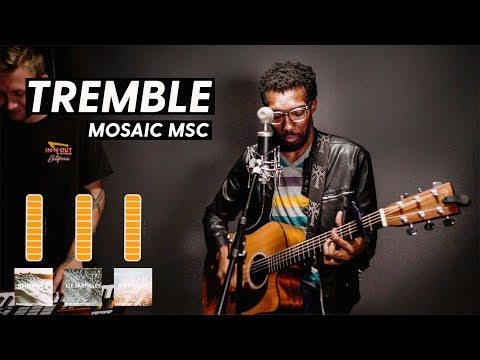 Tremble - Mosaic MSC (Cover) | Churchfront Pads Demo