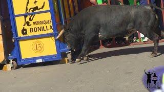 preview picture of video 'Tensiones en Alba de Tormes con los Toros de Patio de resina y de Francisco Madrazo'