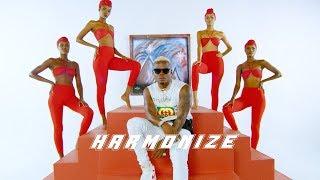 Harmonize X Rayvanny   Paranawe (Official Video)