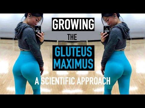 Jak wzmocnić mięśnie i więzadła tyłu