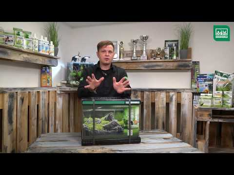 Step by Step Aquascape Timelapse: Dennerle Scaper's Tank 55L by Volker Jochum | DENNERLE