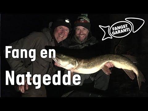 Fiskeri efter gedder om natten med Fangstgaranti