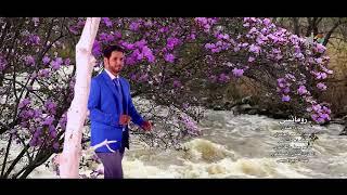 مازيكا رومانسي .. غناء الفنان/ عبدالمنعم العامري HD تحميل MP3
