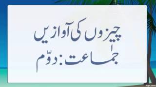 Urdu Lesson Opposite Words Std 2nd - Thủ thuật máy tính