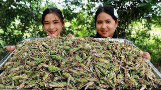 Grasshopper Fried And Fry Recipe - Cooking Grasshoppers - My Food My Lifestyle
