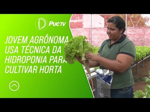 Agrônoma usa técnica da hidroponia para cultivar horta