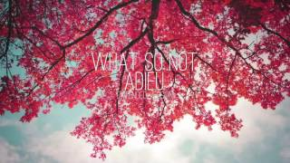 What So Not - Adieu (Extended Version)