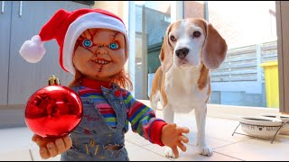 DOGS vs CHUCKY CHRISTMAS EDITION : Funny Dogs Louie & Marie