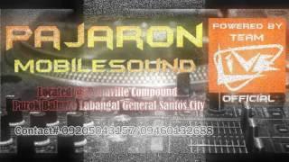 Battle Mix Pajaron Entry(Pa slow)
