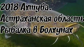 Рыбалка в болхунах 2019 форум