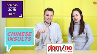 Chinese Slang - Insults! New Course from Domino Chinese - Lesson 1 continued - 学习中文