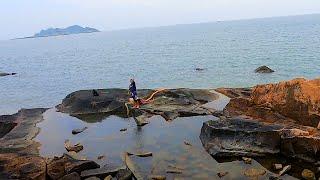 【兄弟趕海】小潮水幾天沒趕海,大熊抽水坑抓到躲藏幾天的海貨,馬上回去賣了