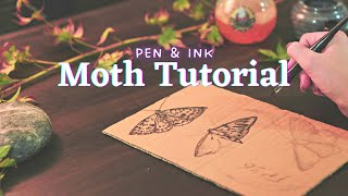 Watercolor & Ink Moth Tutorial