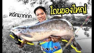 เหยื่อตัวนี้ ของโปรดเค้าเลย | เด็กตกปลา