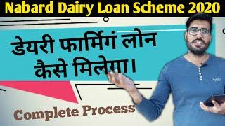 How to get dairy farm loan   Nabard dairy loan scheme 2020   Dairy farming loan subsidy in hindi