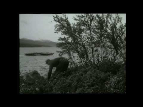 Det hände 1955 (in Swedish)