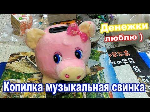 Музыкальная копилка свинка 2019 г. Подарок ребёнку